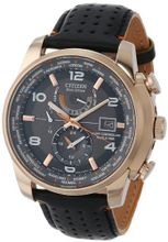 Citizen AT9013-03H World Time A-T Eco-Drive World Chrono Black Leather Strap