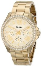 Fossil AM4482 Cecile Analog Display Analog Quartz Gold
